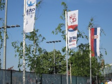flags flying